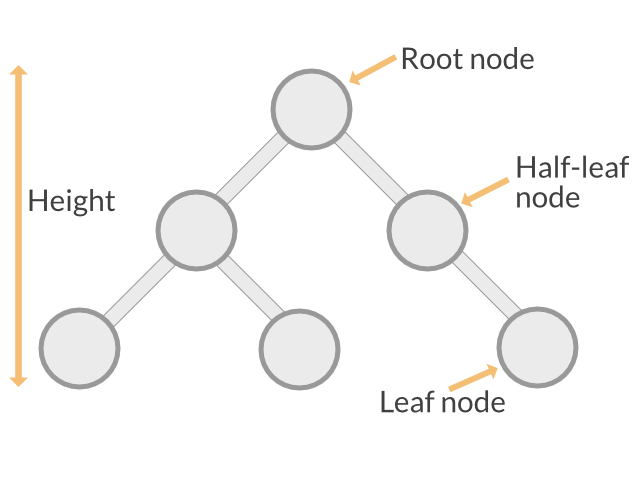 Binary Tree Definitions