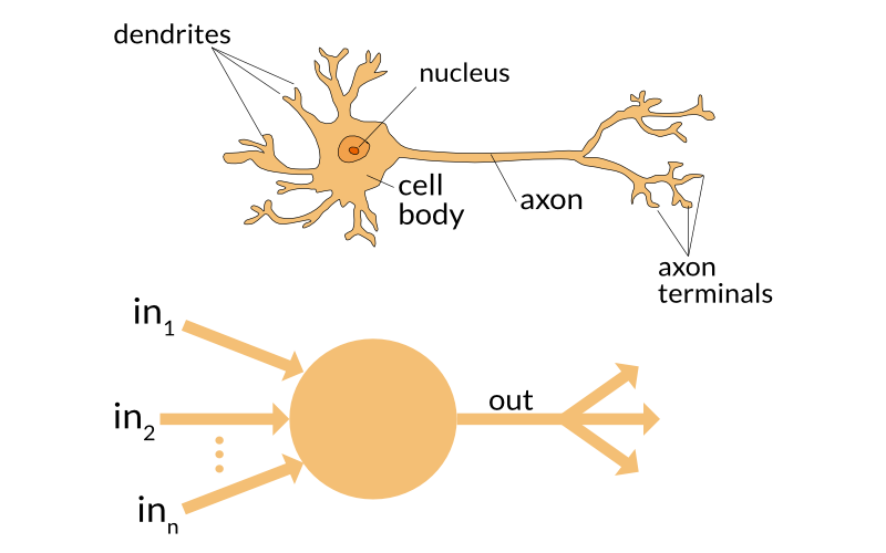 Simple brain icon